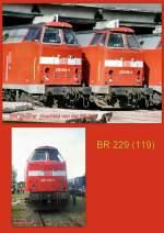 bw-weimar/143676/229er-im-bw-weimar 229er im Bw Weimar