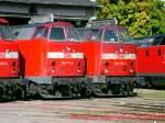 bw-weimar/80146/feierabend-fuer-die-baureihe-219-- Feierabend für die Baureihe 219 - Bw Weimar um 2004