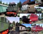 bhf-rennsteig/86586/e-loks-im-bahnhof-rennsteig-2010 E-loks im Bahnhof Rennsteig 2010