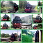 strecke/86590/dampf-auf-der-rennsteigbahn-2010 Dampf auf der Rennsteigbahn 2010