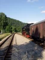 bhf-sitzendorf-unterw/88475/br-65-in-sitzendorf-am-148 BR 65 in Sitzendorf am 14.8. 2010