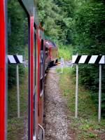 schwarzburg/88016/unterwegs-auf-der-schwarzatalbahn-148-2010 Unterwegs auf der Schwarzatalbahn, 14.8. 2010