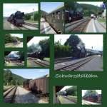 strecke/88326/dampfzug-auf-der-schwarzatalbahn-august-2010 Dampfzug auf der Schwarzatalbahn, August 2010